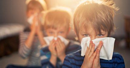 Rinforza il sistema immunitario di tutta la famiglia con i probiotici