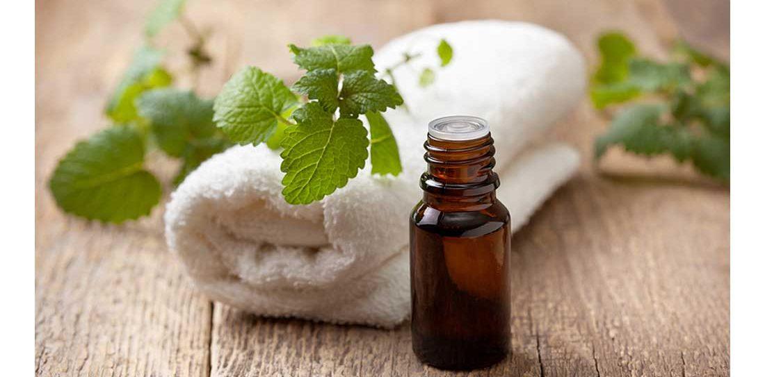 Candida: tea tree oil e i probiotici, i rimedi più efficaci